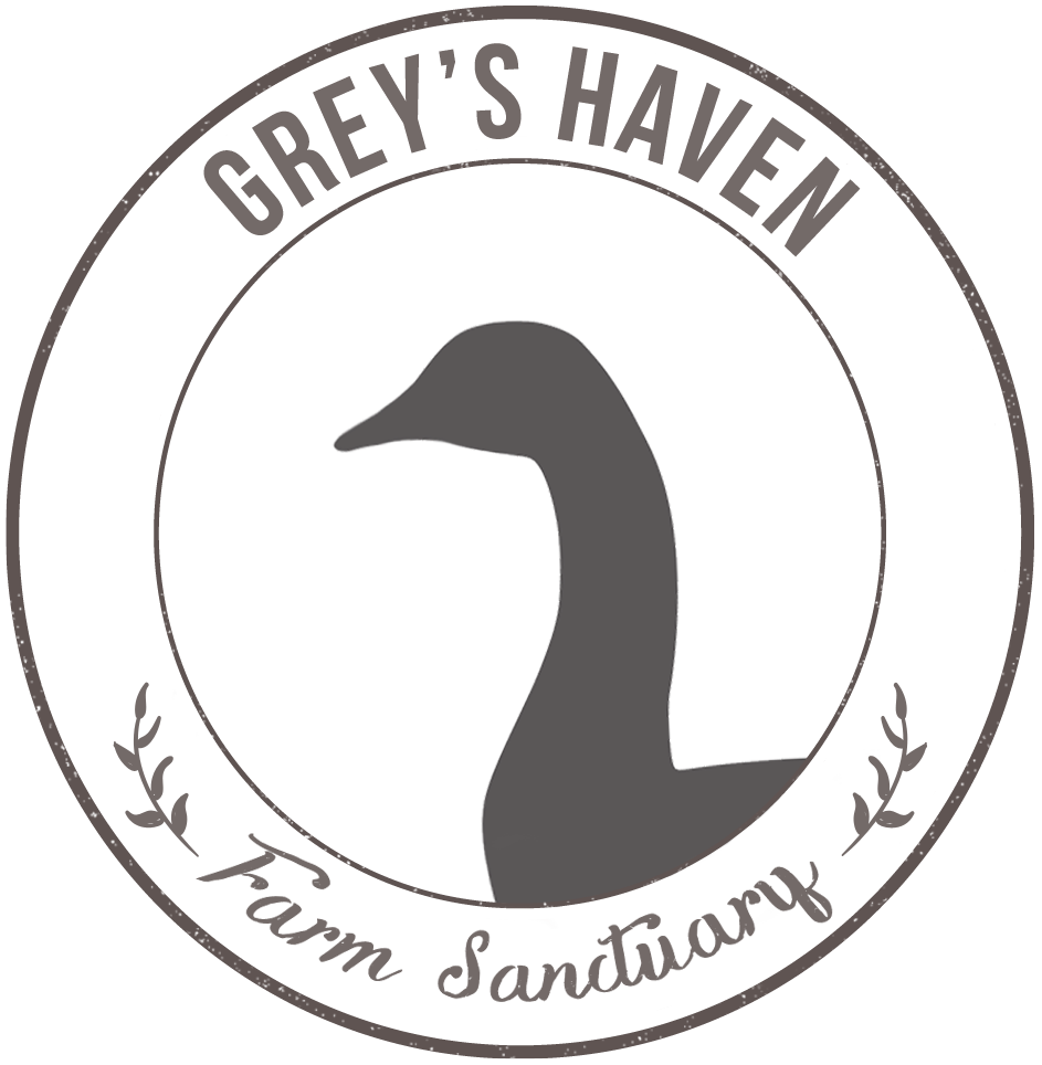Greys Haven Farm Sanctuary Logo